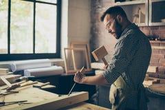 Portrait latéral de vue de profil de profession concentrée réussie photos stock