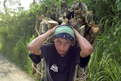 Portrait of Latino teen carrying firewood on head Stock Photos