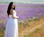 Portrait in lavender Royalty Free Stock Photography