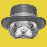 Portrait of Least Weasel with hat and glasses. Royalty Free Stock Images