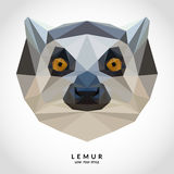 Portrait of Lemur Low Poly Style Royalty Free Stock Photography