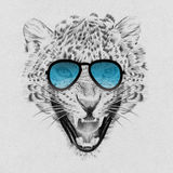 Portrait of leopard drawn by hand in pencil in sunglasses Stock Photo