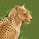Portrait of a leopard vector illustration Stock Photography