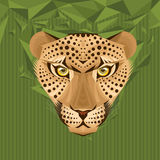 Portrait of a leopard vector illustration Stock Images