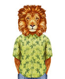 Portrait of Lion in summer shirt. Hand-drawn illustration, digitally colored Stock Photos