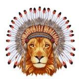 Portrait  of Lion in war bonnet. Royalty Free Stock Photos