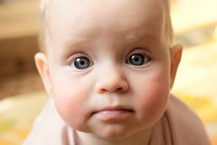 Portrait of the littel girl. Portrait of a little girl with big  eyes Stock Images