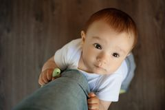 Portrait of a baby boy, embracing mother`s leg and asking to take him on hands or to talk to him stock photography