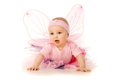 Portrait of little baby in costume isolated Stock Image
