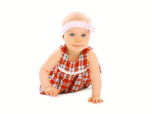 Portrait of little baby girl in the dress crawls Stock Image