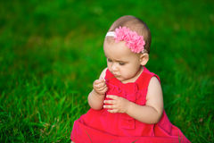 Portrait of A little baby in a red dress. Sits on a green grass Stock Photos