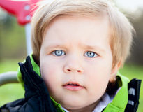 Portrait of a  little boy Royalty Free Stock Photos