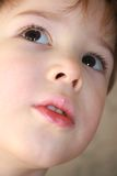 Portrait of a Little Boy. Close-up portrait of a cute little boy with brown eyes Stock Images