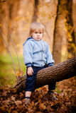 Portrait of little boy in autumn park Royalty Free Stock Photos