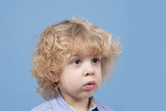 Portrait of a little boy with blond curly hair Royalty Free Stock Photo