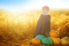 Portrait of a little boy dressed as a dracula outdoors in a pumpkin patch on sunset background. Halloween royalty free stock image