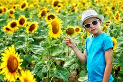 Portrait of a little boy in a field with a flowering sunflower. Portrait of a boy in a field with sunflowers . Beautiful boy in sunglasses and hat on a walk in stock photography