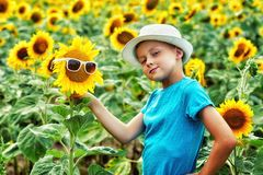 Portrait of a little boy in a field with a flowering sunflower stock photos