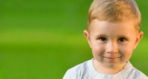 Portrait of little boy on green grass field. Portrait of little boy on sunny green grass field Royalty Free Stock Images