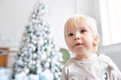Portrait little boy. Happy new year. decorated Christmas tree. Christmas morning in bright living room. sitting on green. Chair royalty free stock photos