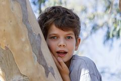 Portrait of a little boy next to a trunk of tree. Portrait of a little boy next to a trunk of eucalyptus tree Stock Image