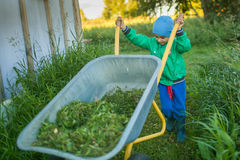 Portrait of a little boy pushes a wheelbarrow. In a country home Stock Photos