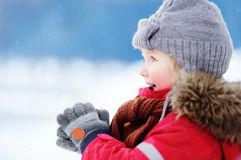 Portrait of little boy in red winter clothes having fun with snow Stock Photography