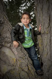 Portrait of little boy siting in tree Royalty Free Stock Photography