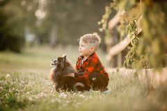 Portrait of a little boy with small dog in the park Stock Images