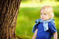 Portrait of little boy during stroll in the forest Royalty Free Stock Photo