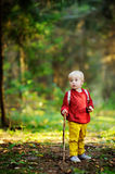 Portrait of little boy walking during the hiking activities in forest Royalty Free Stock Photos