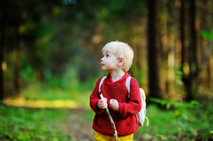 Portrait of little boy walking during the hiking activities in forest Stock Images