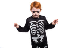 Portrait of little boy wearing halloween costume on white background Stock Photography