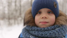 Portrait of little boy in winter time. stock footage