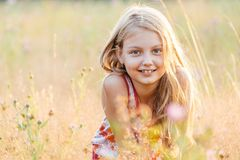 Portrait of little cheerful girl in a meadow royalty free stock images