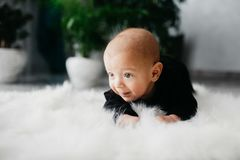 Portrait of a little cute baby boy stock images