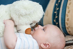 Portrait of little cute baby with sofrt toy Royalty Free Stock Photo