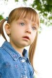 Portrait of a little girl. Portrait of a little cute girl Stock Image