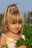 Portrait of the little girl. The little girl with a bouquet in field Royalty Free Stock Photo