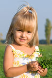 Portrait of the little girl. The little girl with a bouquet in field Stock Photos