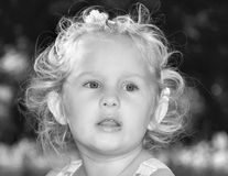 Portrait of a little girl. royalty free stock images