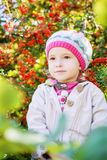 Portrait of a little girl autumn Royalty Free Stock Photo