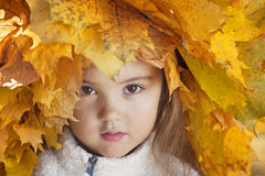 Portrait of little girl with autumn leaves Royalty Free Stock Image