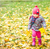 Portrait of a little girl in autumn park Stock Photography