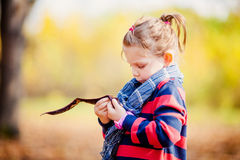 Portrait of little girl in autumn park Royalty Free Stock Images