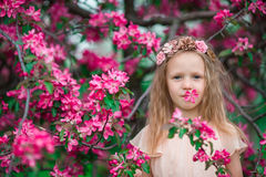 Portrait of little girl in beautiful blooming apple garden outdoors Royalty Free Stock Photography