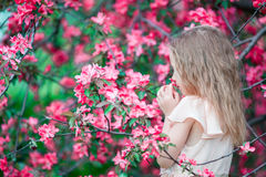 Portrait of little girl in beautiful blooming apple garden outdoors Royalty Free Stock Images