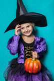 Portrait of little girl in black hat and witch clothing with pumpkin. Halloween. Fairy. Tale. Studio portrait on blue background Royalty Free Stock Images