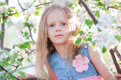 Portrait of little girl in blooming apple tree garden on spring day Stock Image