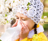 Portrait of a little girl is blowing her nose Royalty Free Stock Image